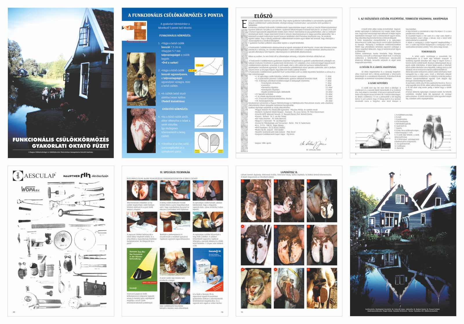 001-FunkcionalisCsulokkormozesGyakorlatiOktatoFuzet-1999