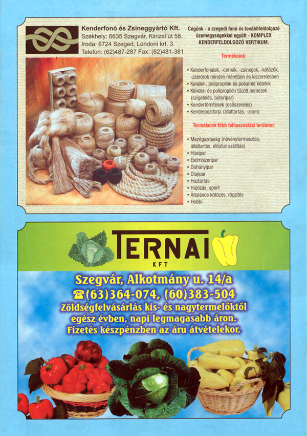 52-SzegvarInformaciosKiadvany2001-b4